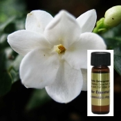 Jasmine Flowers distilled with Sandalwood Oil in one dram glass container